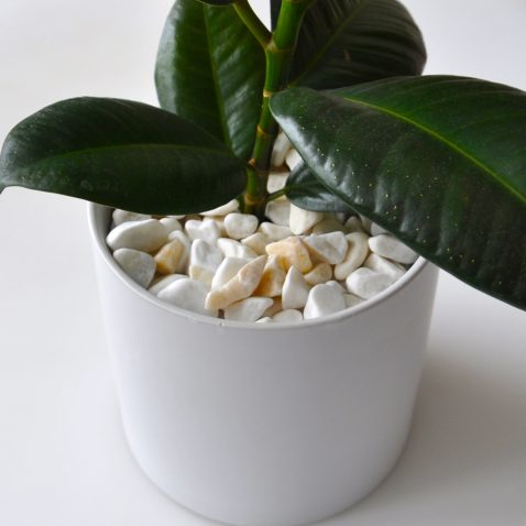Декор грунта «Белый камень»